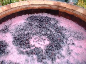 2016.01.13.winemaking1